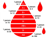 bloodtypes